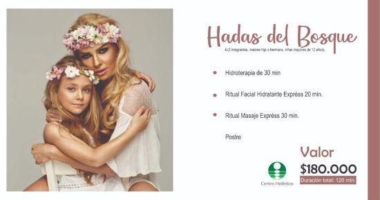 Imagen de HADAS DE LA NATURALEZA